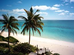 Charter Bahamas: Die palmenums�umten, wei�en Sandstr�nde sind typisch f�r die Bahamas
