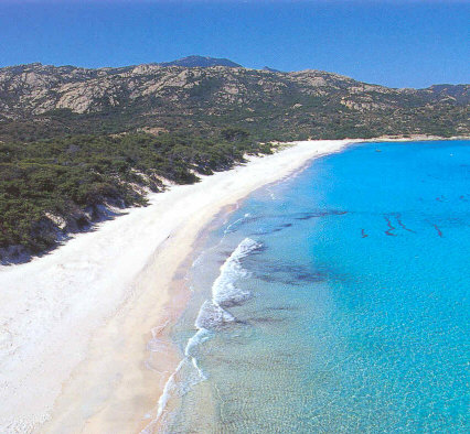 Charter Korsika: Saleccia ist einer der schönsten Strände Korsikas