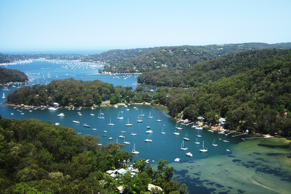 Bootscharter Sydney: Der Naturhafen von Sydney ist ein beliebtes Segelrevier